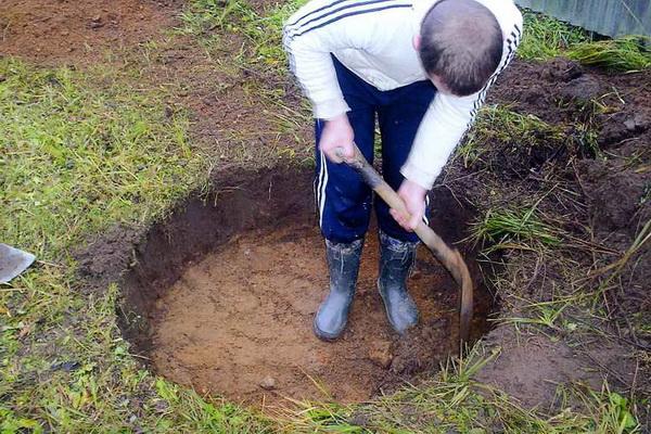 Как определить место, где копать колодец на участке 3